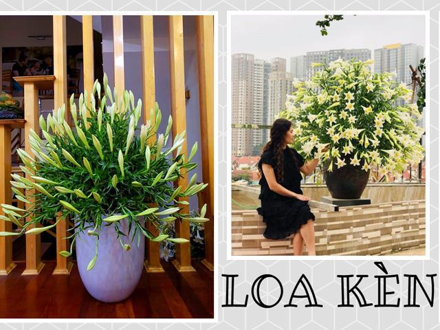 Mê mẩn trăm kiểu cắm hoa loa kèn tháng tư đẹp tinh khôi của các chị em yêu hoa