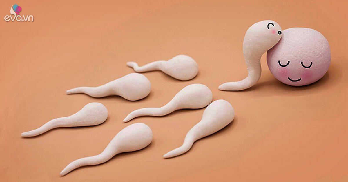 """Dấu hiệu trứng sẽ rụng trong vòng 24 giờ tới, mẹ """"canh"""" ngay để thụ thai"""