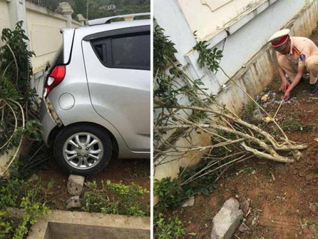 Tin tức 24h: Hé lộ nguyên nhân cô giáo lùi xe khiến học sinh lớp 1 tử vong