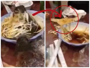 Đang ăn bỗng nhiên cá cứ tưởng đã chín nhảy ra khỏi đĩa khiến thực khách choáng váng, hết hồn