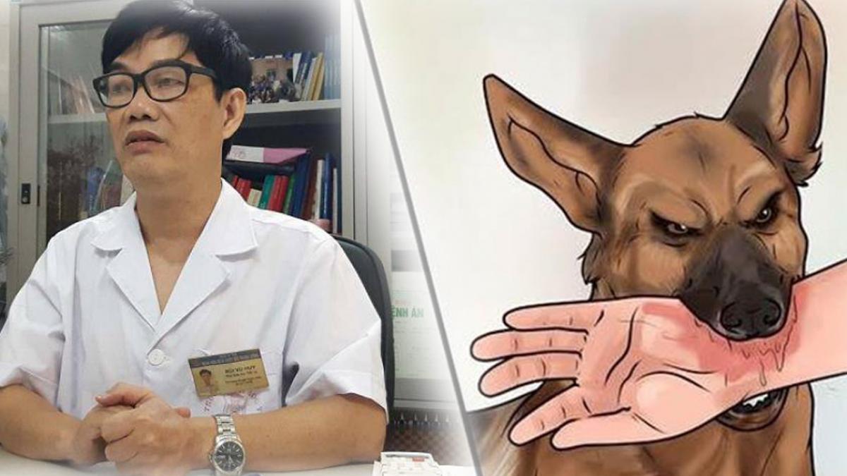 Bị chó dại cắn phải làm gì?