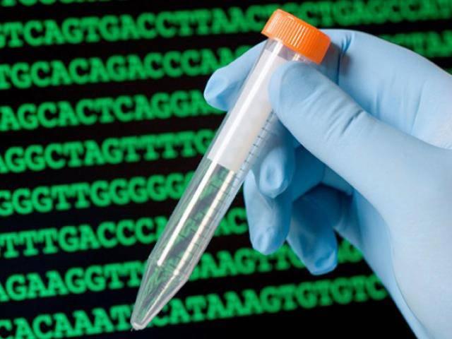 Xét nghiệm ADN cho vui, người đàn ông bất ngờ phát hiện mình nuôi con tu hú suốt 40 năm