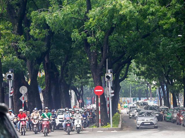 Hình ảnh gây ngạc nhiên trên con đường từng được xem đẹp nhất Sài Gòn