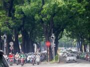 Tin tức - Hình ảnh gây ngạc nhiên trên con đường từng được xem đẹp nhất Sài Gòn