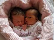 Hiếm muộn 10 năm, đôi vợ chồng già mất cả   núi tiền   để có cặp song sinh