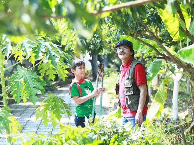 Chẳng ngờ nhà vườn rộng 10.000m² của nông dân Giang còi còn có cả những thứ này
