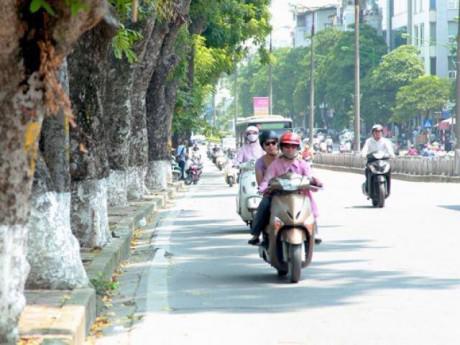 Tin mới thời tiết 24/6: Nền nhiệt giảm nhẹ, Hà Nội mưa dông vào chiều tối