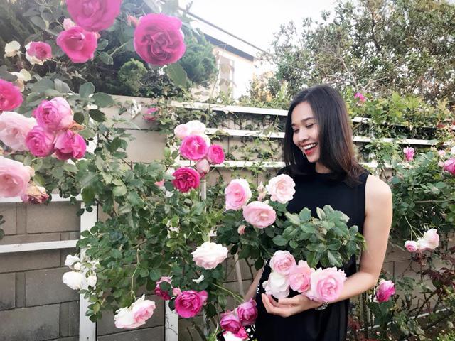 Tình cũ Bằng Kiều khoe khu vườn ngập hoa hồng và cây ăn quả sai trĩu trên đất Mỹ