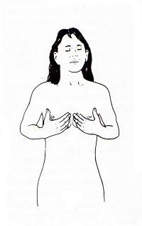 Canh chân gà giúp nở ngực, Làm đẹp, vong mot, vong 1, tang vong 1, tang vong 1 hieu qua, tang vong 1 tu nhien
