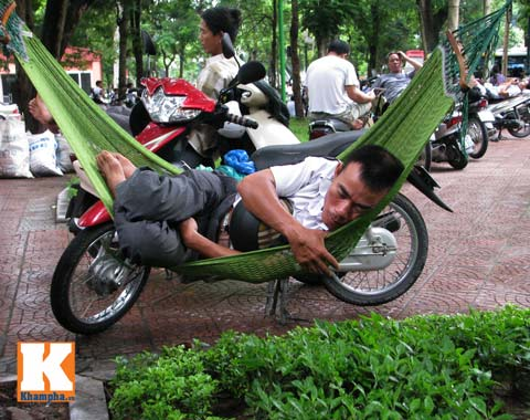 muon kieu phu huynh ngong con thi dai hoc - 14