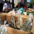 Tin tức - Chợ sâu bọ 'độc nhất' ở Sài Gòn