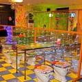 Tin tức - Lạ lùng nhà hàng bồn cầu gây 'sốt' ở Bắc Kinh