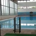 Tin tức - Bé 6 tuổi tử vong trong bể bơi trường học