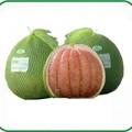 Mua sắm - Giá cả - Bưởi đứng đầu loại quả không chứa chất độc hại