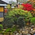 Nhà đẹp - Đẹp lạ lùng vườn Nhật đúng chất