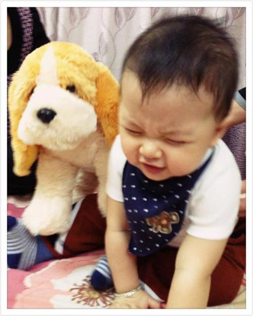 "thuy van: "" toi khong cho con an rong"" - 1"