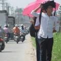 Tin tức - TP. Hồ Chí Minh: Ngày nắng, tối có mưa