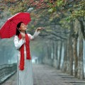 Tin tức - Ngày mai, Hà Nội đón gió mùa đông bắc