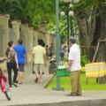 Tin tức - Clip bán dừa dạo đeo bám khách du lịch SG