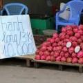 Mua sắm - Giá cả - Trái cây giá dưới 10.000 đồng ngập Sài Gòn