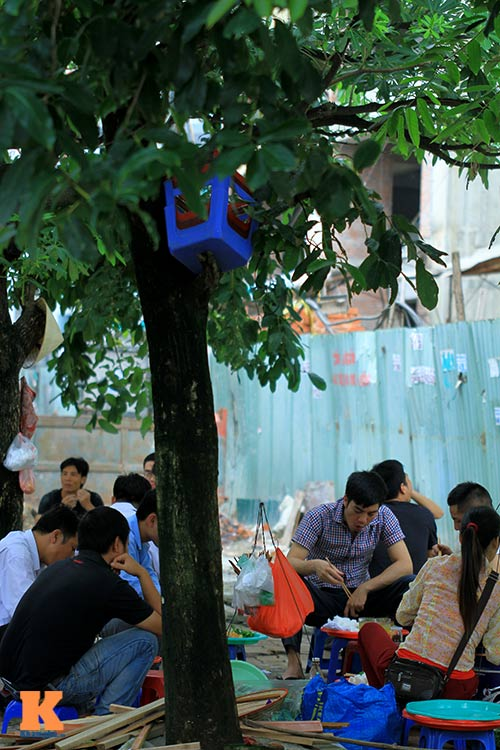 'Cây quảng cáo' miễn phí ở Hà Nội-12