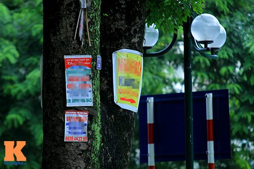 'Cây quảng cáo' miễn phí ở Hà Nội-2