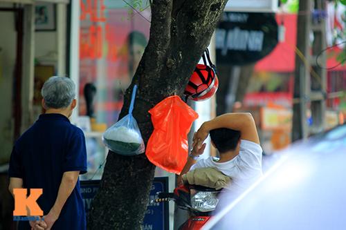 'Cây quảng cáo' miễn phí ở Hà Nội-6