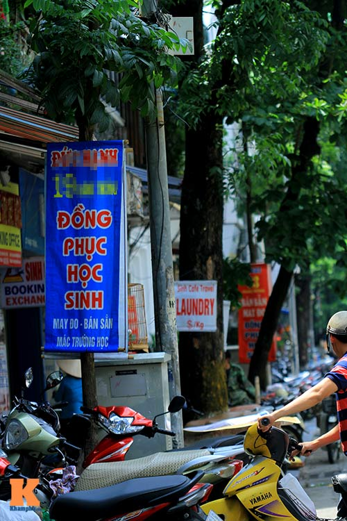 'Cây quảng cáo' miễn phí ở Hà Nội-10