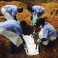 Tin tức - Hàng không Anh ngừng bay tới Tây Phi vì sợ virus Ebola