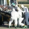 Tin tức - Bệnh nhân đầu tiên ở châu Âu nhiễm Ebola qua đời