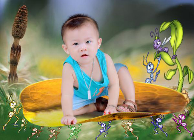 Bé Trịnh Đắc Minh Quân mới được 2 tuổi nhưng bé rất ngộ nghĩnh và đáng yêu.