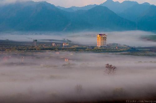 Vẻ đẹp mê hoặc của Mộc Châu trong sương sớm - 5