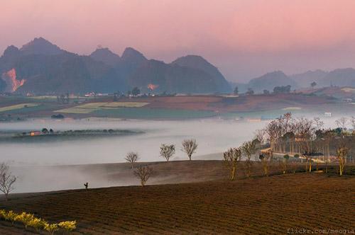 Vẻ đẹp mê hoặc của Mộc Châu trong sương sớm - 6