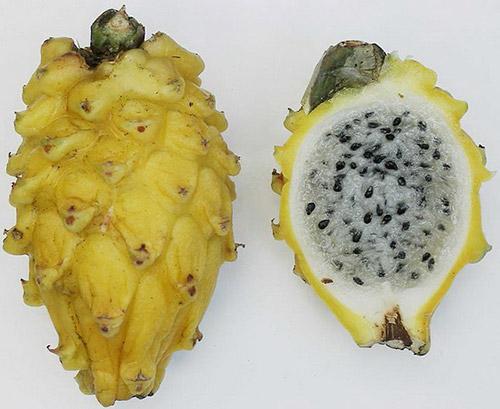 Khi trái cây có màu khác với chúng ta thường thấy-12