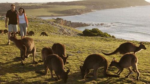 10 điểm du lịch khiến bạn không cảm thấy cô đơn-6