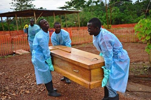 Hot: Đã tìm ra nguồn gốc lây nhiễm dịch Ebola-1