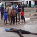 Tin tức - Chó bới mộ, ăn xác của các bệnh nhân Ebola