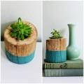 Nhà đẹp - Làm chậu cây mini xinh yêu từ khúc gỗ