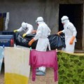 Tin tức - Ebola có thể biến đổi và gây đại họa cho nhân loại