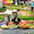 Tin tức - Bộ trưởng Tiến hứa truy tìm chất độc trong hoa quả