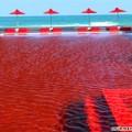 Nhà đẹp - 15 bể bơi tuyệt mỹ nhất thế giới