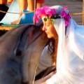 Tin tức - Những đám cưới kỳ lạ giữa người và động vật