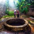 Vẻ đẹp bình dị của làng quê Việt
