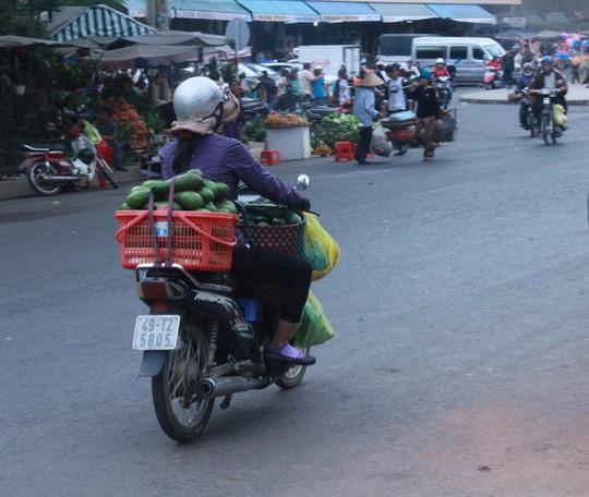 Bơ Lâm Đồng được giá, nông dân mừng ra mặt-3