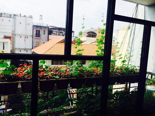 tp.hcm: van phong cho nhan vien thoa thue trong rau sach - 9