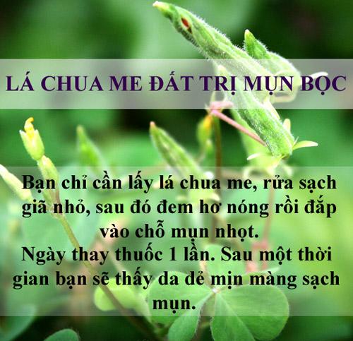 tri sach mun chi mat vai nghin dong bang la cay - 2
