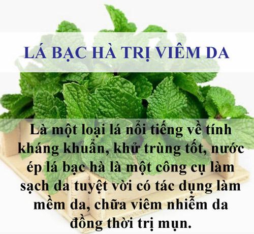 tri sach mun chi mat vai nghin dong bang la cay - 4