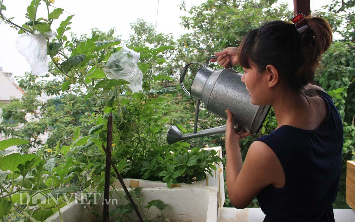 "cham vuon rau san thuong - tuyet chieu ""com lanh canh ngot"" cua vo chong tre - 9"