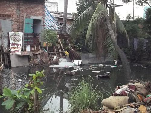 TP.HCM bùng nổ dịch sốt xuất huyết do người dân 'bất hợp tác'-5