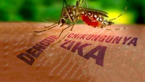 them mot quoc gia dong nam a xac nhan co nguoi mac virus zika - 1